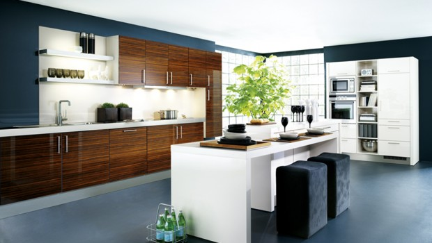 Modern_Kitchen_4_29904830_large